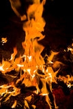 Wood in the fire Stock Photography