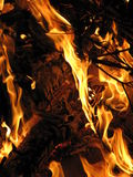 Wood Fire. Burning with flames Royalty Free Stock Photos