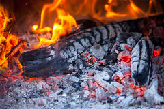 Wood fire. Burning fire wood and ember Stock Photo