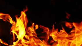 Wood Fire in the Dark Royalty Free Stock Image