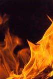 Wood Fire Flame III Stock Image