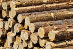 Wood for fireplaces. Royalty Free Stock Image