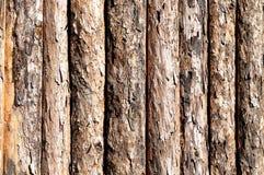 Wood, firewood Stock Photos