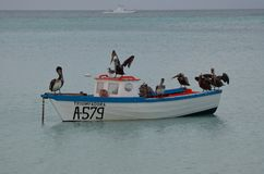 Anchored Fishing Boat in the Tropical Waters off Aruba Royalty Free Stock Photography