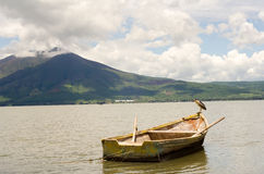 Wood fishing boat and waterfowl. Bird on wood fishing boat in Lake Chapala with mountain in background Royalty Free Stock Photo
