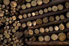 Wood flattened into neat stacks Stock Photo