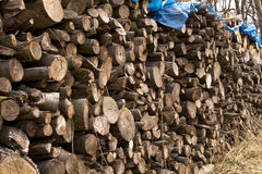 Wood flattened into neat stacks Stock Photos