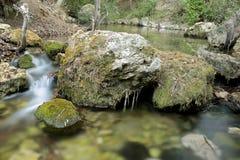 Wood flod i sommar Arkivfoto