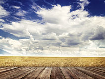 Wood floor and  agricultural fields Stock Images