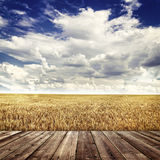 Wood floor and  agricultural fields Stock Photos