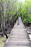 Wood floor with Bridge in the forest Stock Photo