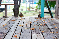 Wood floor with fall leaves Stock Photos