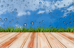 Wood floor and grass with drop of water on blue sky backgrounds. Wood floor and grass with drop of water on blue sky backgrounds Royalty Free Stock Images