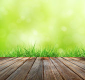 Wood floor with green bokeh  and  Fresh spring green grass and sunlight Stock Images