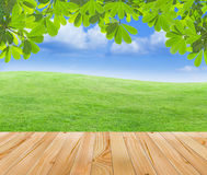 Wood floor with nature view. Wood floor with green fields and blue sky background Stock Photos