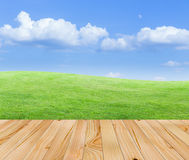 Wood floor with nature view. Wood floor with green fields and blue sky background Royalty Free Stock Photos