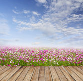 Wood floor under flower field and clouds sky Stock Image