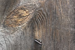 Wood , flooring , natural texture with rusty nails 20432 Royalty Free Stock Photo