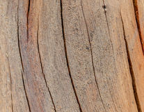 Wood floors are dirty. Royalty Free Stock Images