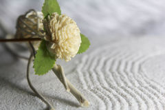 Wood flower on sand royalty free stock photo