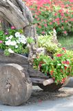 Wood flowerpot Stock Image
