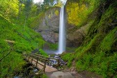 Wood Foot Bridge by Latourell Falls in Oregon USA Stock Images