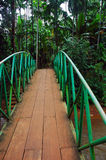 Wood footbridge Royalty Free Stock Photos