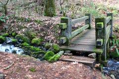 Wood Footbridge stock images