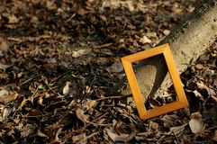 The wood frame Royalty Free Stock Images
