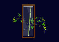 Wood frame with glass  bamboo in the fame ,Vector illustration Stock Images