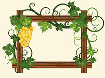 Wood frame with grape. Vector illustration Royalty Free Stock Image