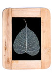 Wood frame and pho leaves Royalty Free Stock Photography