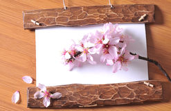 Wood frame with spring flowers Stock Photos
