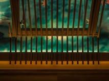 Wood garnering Arkivbild