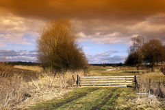 Wood-gate. Closed wood-gate to a meadow in the spring on the right side Stock Photos