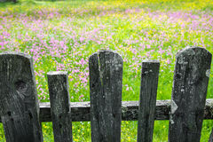 Wood gate Royalty Free Stock Photography