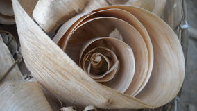 Wood gift of nature. Cuttings of wood ready to use Stock Image