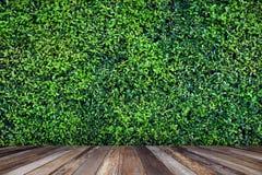 Wood golv med grön tjänstledighetbakgrund för garnering fotografering för bildbyråer