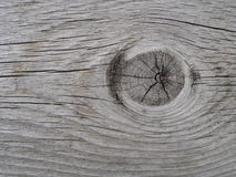 Wood grain. Wood texture Royalty Free Stock Image