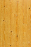 Wood grain. Closeup detail shot on wood grain Stock Images