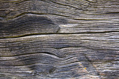 Wood grain. Old wood and burned-rich veins Stock Photography