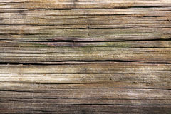 Wood Grain Background Stock Photography