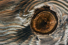 Wood Grain Background. Detail of a knot on weathered wood Stock Photography