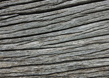 Wood grain backgrounds Stock Photo