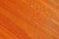 Wood grain of blue gum timber clear coated Royalty Free Stock Image