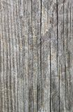 Wood Grain III Stock Photography