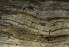 WOOD GRAIN Stock Photos