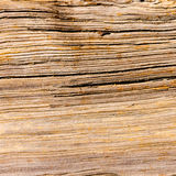 Wood Grain Organic Background Texture Royalty Free Stock Photography