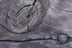 Wood Grain Pattern for Background Stock Photo