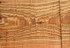 Wood grain rough cut cross section Royalty Free Stock Photo